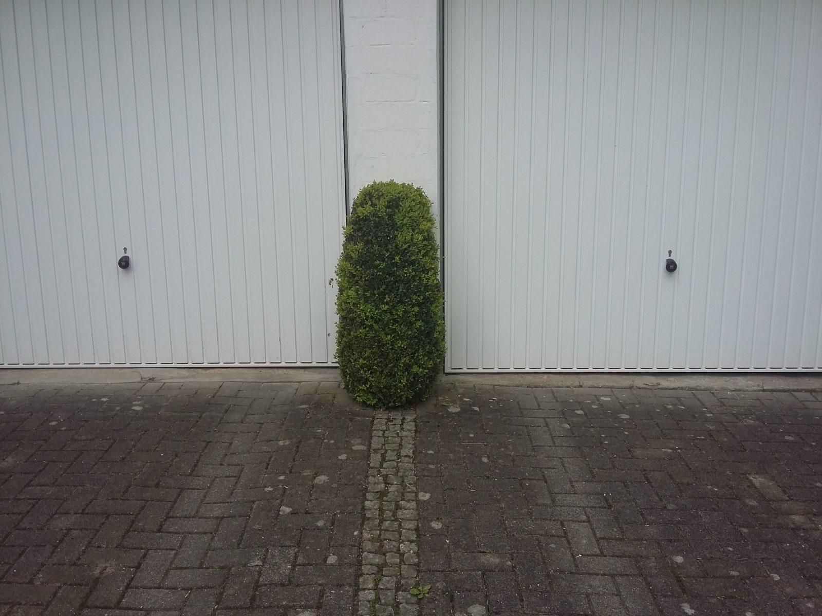 Servicepionier_Servicekomplize_Armin_Nagel_Orte_des_Grauens_Parkplatz (60)